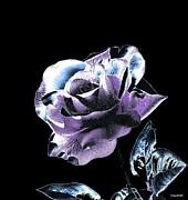 Single Rose V Print by Annie Zeno