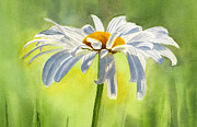 White Painting Metal Prints - Single White Daisy Blossom Metal Print by Sharon Freeman