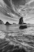 Olympic National Park Prints - Siren of the Sea Print by Joseph Rossbach
