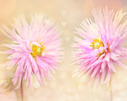 Flower Photos Metal Prints - Sisters Metal Print by Amy Tyler