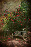Red Flowers Posters - Sit With Me Here Poster by Laurie Search