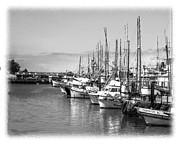 William Havle - Sitten In The Harbor
