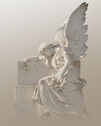 Josephine Cohn - Sitting Angel