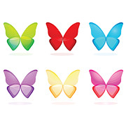 Anne Marie Baugh - Six Colorful Butterflies