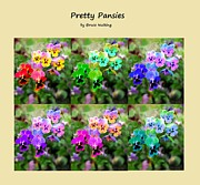 Bruce Nutting - Six Pretty Pansies
