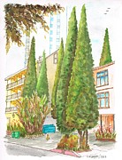 Scenic Drive Painting Posters - Six sad cypresses at 8700 Shoreham Dr in the Hollywood Hills-California Poster by Carlos G Groppa
