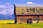 Skagit Digital Art - Skagit Barn by Kari Nanstad