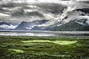 British Photo Originals - Skeena River Spring Green by Evan Spellman