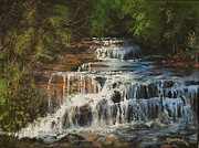 Falls Paintings - Skillet Creek Falls Wisconsin by Tom Shropshire