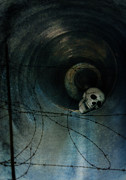 Skull Photos - Skull in Drainpipe by Jill Battaglia