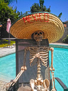 Gregory Dyer - Skullys Mexican Holiday