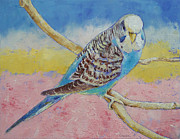Michael Painting Framed Prints - Sky Blue Budgie Framed Print by Michael Creese