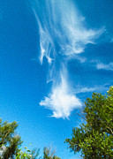 Twisp Photo Prints - Sky Dragon Print by Omaste Witkowski