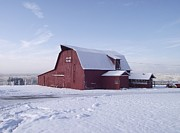 Red Barn In Winter Photos - Sky Line Farm by Michelle Welles