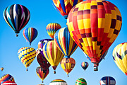 Hot Air Balloon Posters - Sky of Color Poster by Shane Kelly