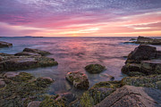 Green Sea Print Posters - Sky Purple Poster by Jon Glaser