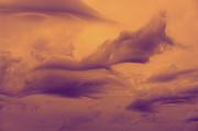 Nina Stavlund - Sky Whales...