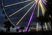 Kris Napier - Sky Wheel at Night