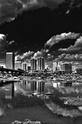 Skyline Framed Prints - Skyline Along The River Framed Print by Tim Wilson