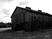 Ralph Dickerson - Skyline Barn