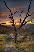 Wayne Letsch - Skyline Drive Sunset