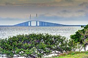 Tampa Skyline Prints - Skyway Bridge in the Clouds Print by Zane Kuhle