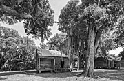 Slaves Photo Framed Prints - Slave Quarters 2 monochrome Framed Print by Steve Harrington