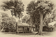 Evergreen Plantation Photo Framed Prints - Slave Quarters sepia Framed Print by Steve Harrington