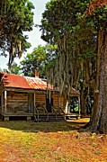 Evergreen Plantation Prints - Slave Quarters Print by Steve Harrington