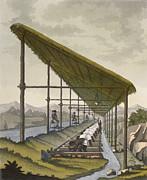 Slaves Washing The Silt To Find Print by D.K. Bonatti