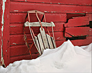 Snow Drifts Photos - Sled on Red by Nikolyn McDonald