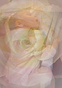Abstract Realism Photos - Sleep My Baby by Shirley Sirois