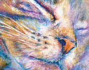 Whiskers Prints - Sleeper Kitty Print by Christy  Freeman