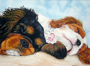 Sleeping Cavalier Puppies Print by Toulla Hadjigeorgiou