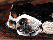 Sleeping Art - Sleeping Dogs Lie by Liane Weyers