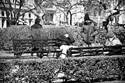 Park Benches Photos - Sleeping in the Park 1990s by John Rizzuto