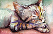 Watercolor Cat Paintings - Sleeping Kitten by Olga Shvartsur