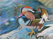 Disney Pastels Posters - Sleeping Mandarin Duck Poster by Dana Schmidt