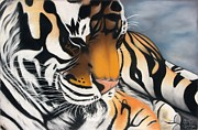 Annie Seddon - Sleeping Tiger