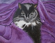Carol De Bruyn - Sleepy Cat