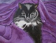 Sleepy Cat Print by Carol De Bruyn