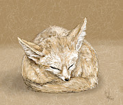 Hannah Taylor - Sleepy fox