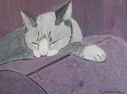 Cat Paw Originals - Sleepy by Lou Belcher