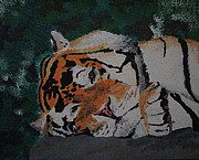 Megan Hughes - Sleepy Tiger