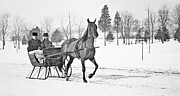 Horse And Sled Framed Prints - Sleigh Ride Winter c 1897 Vintage Photograph Framed Print by A Gurmankin