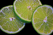Sandi Oreilly Art - Sliced Limes by Sandi OReilly