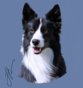 Collie Digital Art Posters - Slick Poster by Laura Rothstein