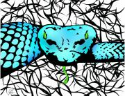 Viper Digital Art Framed Prints - Slithering Blue Framed Print by Jamie Lynn