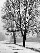 Winter Road Scenes Photo Prints - Slow Going I Print by Julie Dant