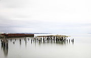 Pilings Photos - Slow Time by Margaret Hood